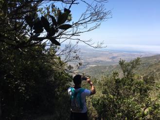 www.pichidanguiexpediciones.cl